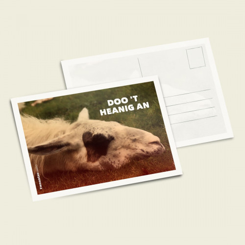 fotokaarten twentse teksten
